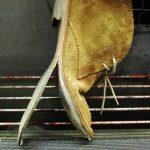 Schuh mit halb abgerissener Sohle